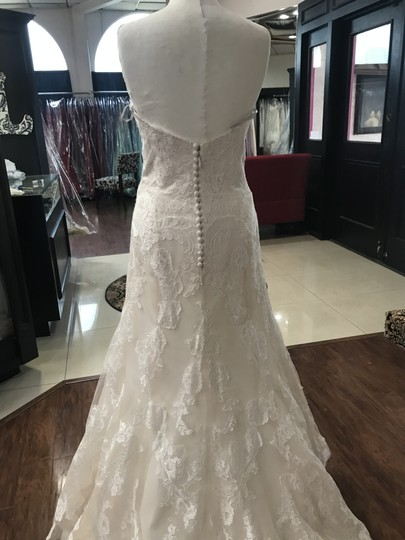 Wtoo Oatmeal Lace 15130 Formal Wedding Dress Size 6 (S) Image 1