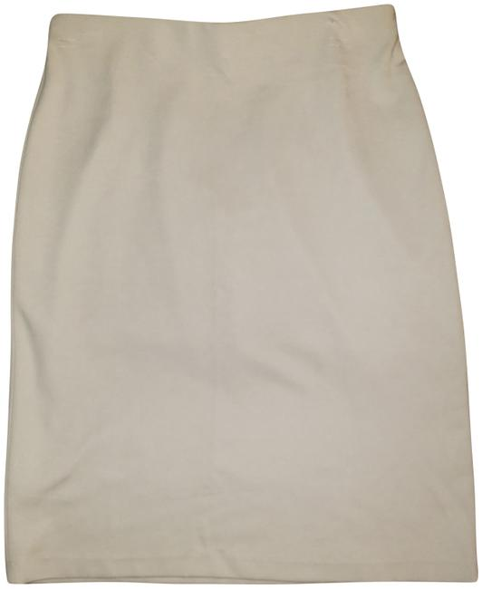 Preload https://img-static.tradesy.com/item/25329019/gray-beige-republic-clothing-pencil-skirt-size-2-xs-26-0-1-650-650.jpg