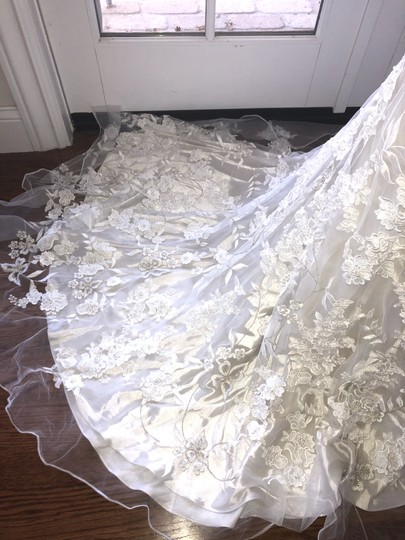 Allure Bridals White Lace Over Cafe/Silver Slip 8800 Never Worn Feminine Wedding Dress Size 4 (S) Image 6