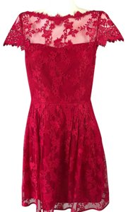 Cynthia Steffe short dress Red Lace Floral on Tradesy