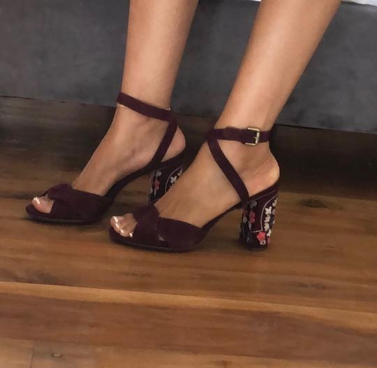 Chloé burgundy Pumps Image 1