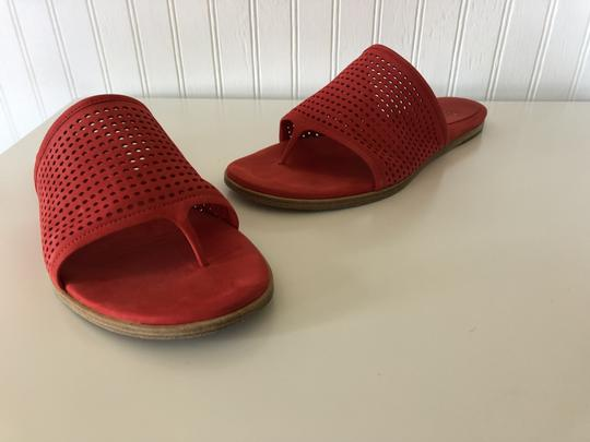 Eileen Fisher Suede Perforated red Sandals Image 5