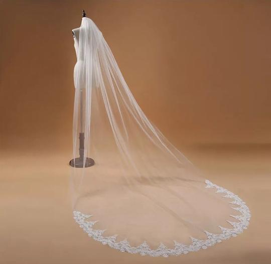 Long 3m 10ft Lace Appliqué Edge Cathedral White Or Ivory Bridal Veil Image 1