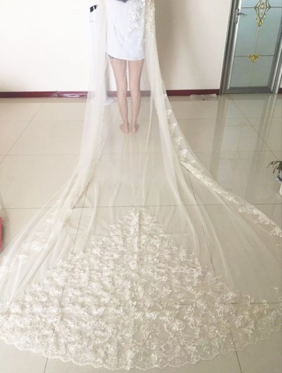 Long White Or Ivory 3m One Tier with Comb Bridal Veil Image 2