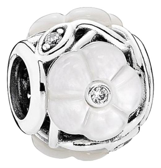 Preload https://img-static.tradesy.com/item/25496027/pandora-luminous-florals-silver-mother-of-pearl-and-cz-charm-0-1-540-540.jpg