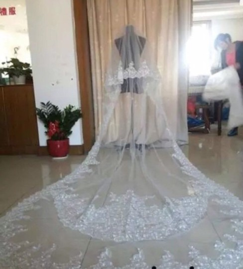 Long White/Ivory 10 Foot 2t Tier Cathedral Bridal Veil Image 3