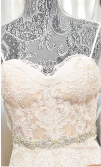Inbal Dror Nude Lace Gown Formal Wedding Dress Size 4 (S) Image 1