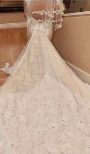Inbal Dror Nude Lace Gown Formal Wedding Dress Size 4 (S) Image 3