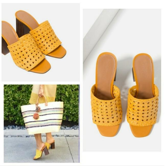 Zara Yellow Special Edition (3614) Mules/Slides Size US 6.5 Regular (M, B) Zara Yellow Special Edition (3614) Mules/Slides Size US 6.5 Regular (M, B) Image 2