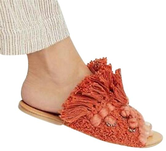 Preload https://img-static.tradesy.com/item/25555703/free-people-coral-mars-at-night-sandals-size-us-6-regular-m-b-0-1-540-540.jpg