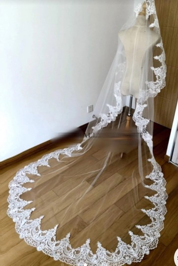 Long 3m/10 Ft White/Ivory Lace Cathedral Bridal Veil Image 3