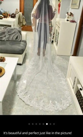 Long 3m/10 Ft White/Ivory Lace Cathedral Bridal Veil Image 5
