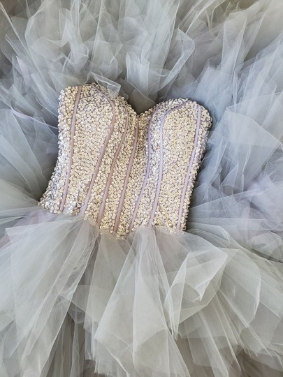 Silver Grey Tulle Sweetheart Sequins Puffy Poofy Ruffles Gala Ball Gown Feminine Wedding Dress Size 4 (S) Image 4