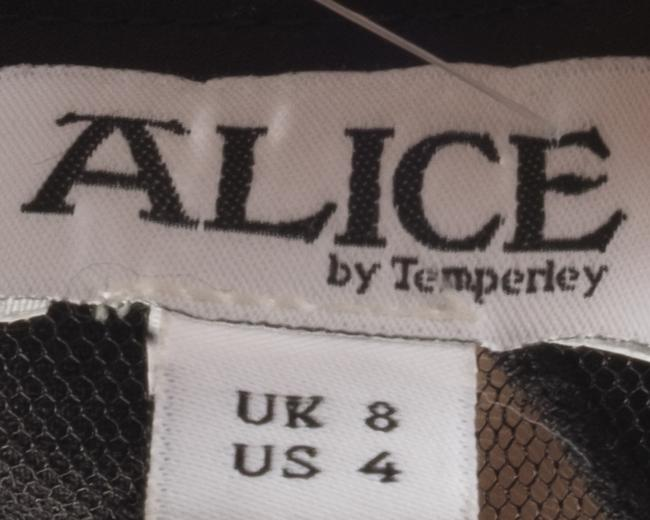 ALICE by Temperley Dress Image 3