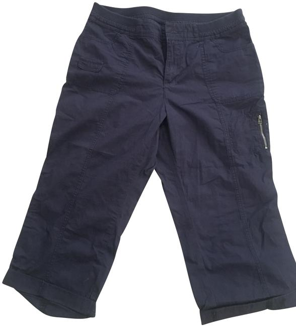 Preload https://img-static.tradesy.com/item/25600580/croft-and-barrow-navy-pants-capris-size-12-l-32-33-0-1-650-650.jpg
