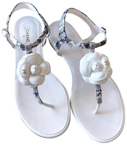 Chanel Camellia Flats Thong Flip Flop White Navy Sandals