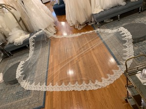 Ivory Long High Quality Cathedral Lace Bridal Veil