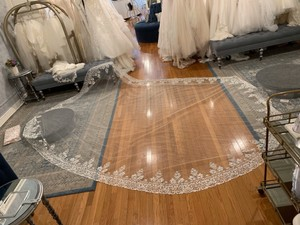 Ivory Long High Quality Lace Trimmed Bridal Veil