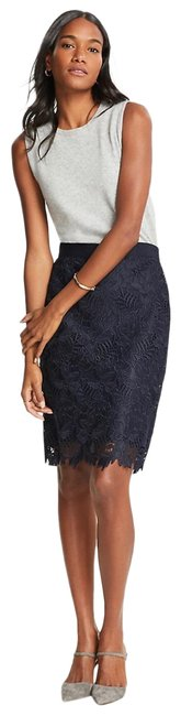 Preload https://img-static.tradesy.com/item/25638053/ann-taylor-lace-pencil-skirt-size-10-m-31-0-1-650-650.jpg