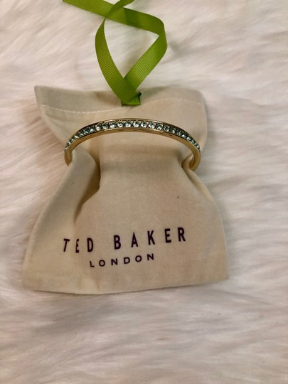 Ted Baker NEW Ted Baker London - Clem Narrow Crystal Band Bangle Image 2