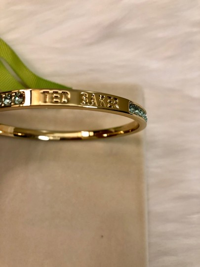Ted Baker NEW Ted Baker London - Clem Narrow Crystal Band Bangle Image 4
