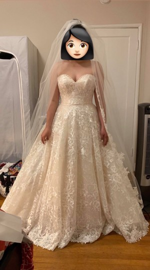 Preload https://img-static.tradesy.com/item/25677885/adrianna-papell-ivorylight-goldsilver-lace-style-31100-formal-wedding-dress-size-10-m-0-0-540-540.jpg