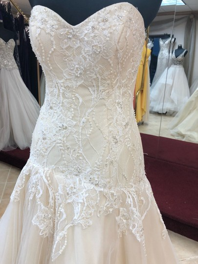 Casablanca Couture Ivory Lace/Champagne Lining Gown Sexy Wedding Dress Size 8 (M) Image 1