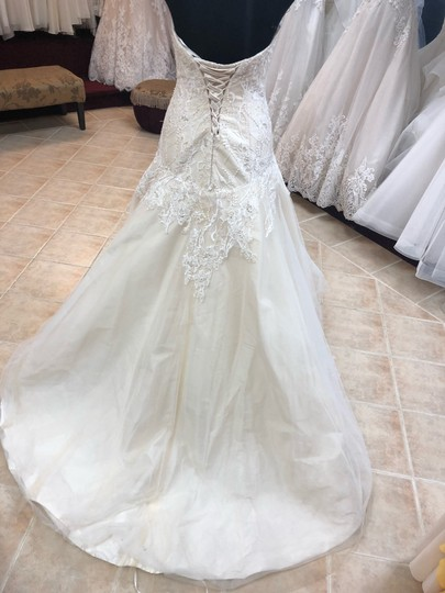 Casablanca Couture Ivory Lace/Champagne Lining Gown Sexy Wedding Dress Size 8 (M) Image 3