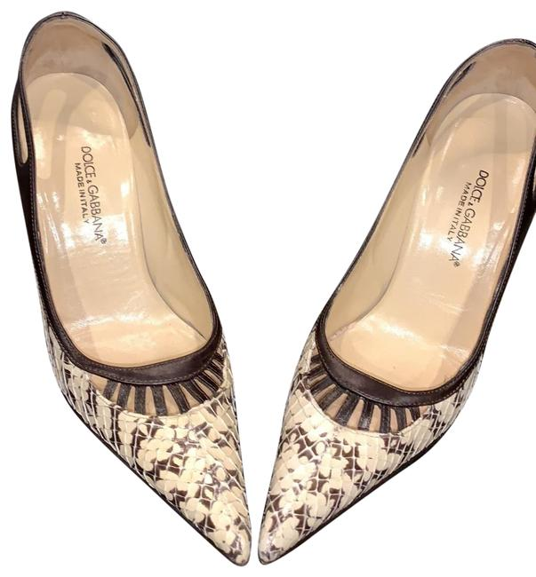 Item - Brown/Beige 2387 Roccia/Moro Pumps Size EU 36 (Approx. US 6) Regular (M, B)
