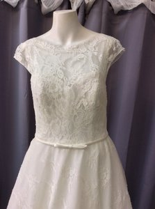 Pronovias Off White Lace Olga Traditional Wedding Dress Size 6 (S)