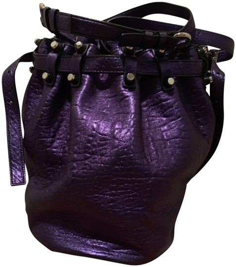 Preload https://img-static.tradesy.com/item/25765327/alexander-wang-bucket-diego-purple-hobo-bag-0-1-540-540.jpg