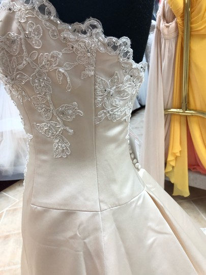 Anjolique Champagne. Ivory. Satin. Lace. A-line Gown Formal Wedding Dress Size 6 (S) Image 3