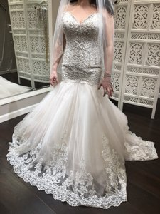 Allure Bridals Champagne/Ivory/Silver English Net and Lace 9325 Feminine Wedding Dress Size 12 (L)
