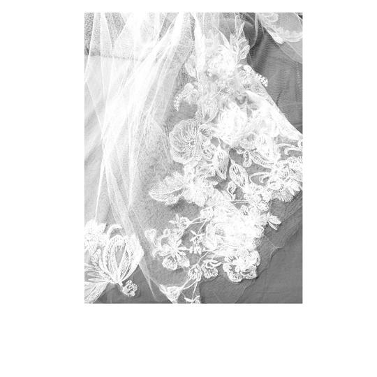 David's Bridal White Long One Tier Sequin & Lace Cathedral Bridal Veil Image 1