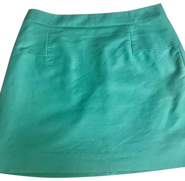 Preload https://img-static.tradesy.com/item/25795616/jcrew-alina-mint-green-made-of-95cotton-5-spandex-skirt-size-12-l-32-33-0-1-650-650.jpg