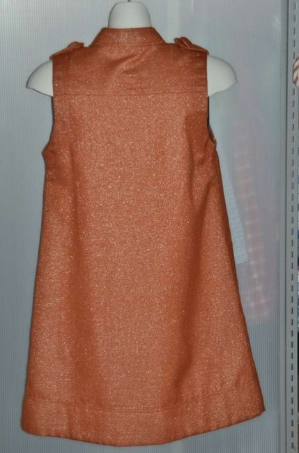 XXOO short dress XXOO Dress RUST with sparkles 60's Style Two Pockets In Front Lapels On Large Buttons Burnt Orange Color Throughout The Fabric Sleeveless Super A on Tradesy