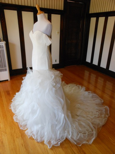 Pronovias Ivory Profeta Destination Wedding Dress Size 10 (M) Image 1