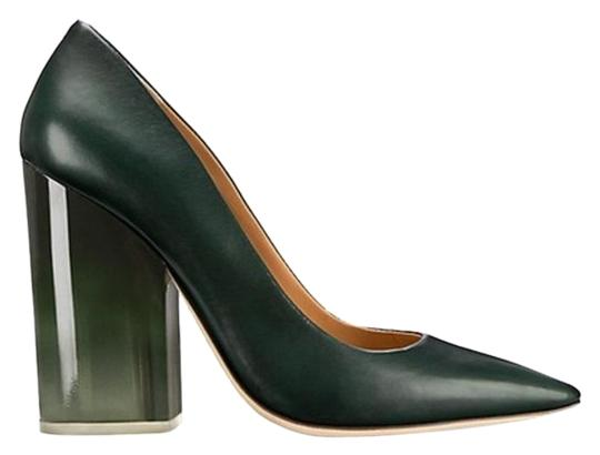 Preload https://img-static.tradesy.com/item/25822115/tory-burch-green-francesca-dark-leather-lucite-heel-pointed-pumps-size-us-105-regular-m-b-0-1-540-540.jpg
