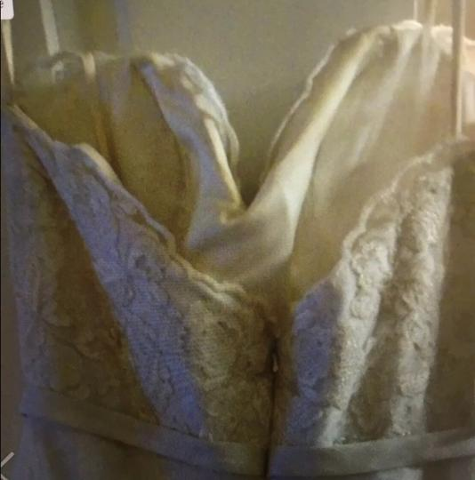 Ivy & Aster And Traditional Wedding Dress Size 4 (S) Image 3