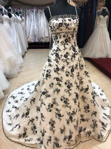 Anjolique Black Ivory Lace A-line And Formal Wedding Dress Size 8 (M)