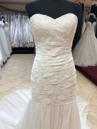 Anjolique Ivory Soft Tulle Lace Fit and Flare Destination Wedding Dress Size 8 (M) Image 1