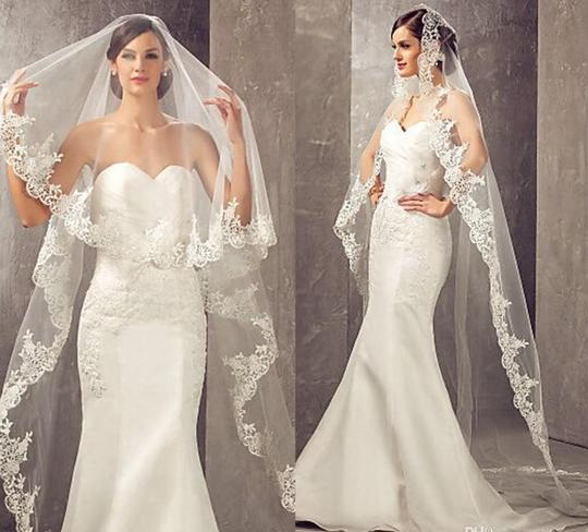 Preload https://img-static.tradesy.com/item/25850487/long-white-or-ivory-3m10ft-1t-lace-applique-edge-cathedral-with-comb-bridal-veil-0-0-540-540.jpg