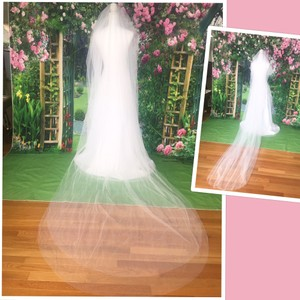 Long White Or Ivory 3m/10ft 2t Cut Edge Cathedral Bridal Veil