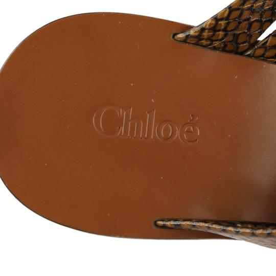 Chloé Leather Gold Hardware Brown Sandals Image 8
