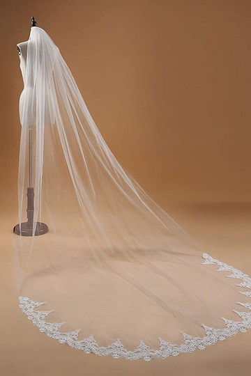 Champagne Long White Ivory Lace Edge Cathedral Length Veil+comb Bridal Veil Image 1