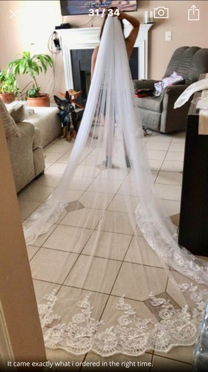 Long New White Or Ivory 3m/10 Ft Cathedral with Comb Bridal Veil Image 7