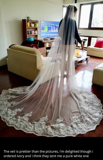 Long New White Or Ivory 3m/10 Ft Cathedral with Comb Bridal Veil Image 9