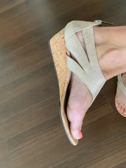 Donald J. Pliner Taupe and Metallic Silver Wedges Image 9