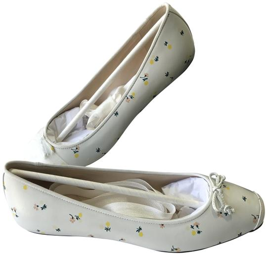 Preload https://img-static.tradesy.com/item/25900358/cole-haan-white-floral-downtown-ballet-leather-flats-size-us-9-regular-m-b-0-2-540-540.jpg