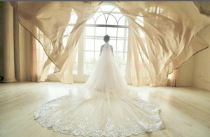 Long New White Or Ivory 3m/10 Feet Sequins Cathedral Bridal Veil